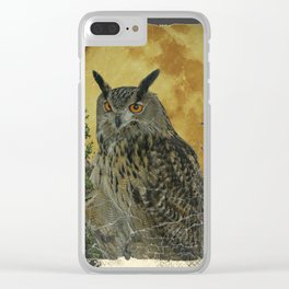 SHABBY CHIC ANTIQUE NIGHT OWL  FULL MOON Clear iPhone Case