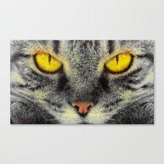 Gato Loco Canvas Print
