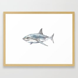 Shark-Filled Waters Framed Art Print