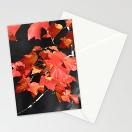 Cold Fall Stationery Cards