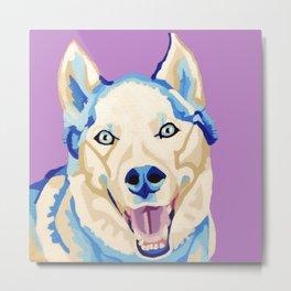 Atlas the Husky - Pet Portrait Metal Print