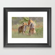 Fox Felicity - Mother and fox kit showing love and affection Framed Art Print