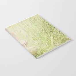 tall grass Notebook