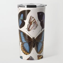 Vintage Scientific Insect Butterfly Moth Biological Hand Drawn Species Art Illustration Travel Mug