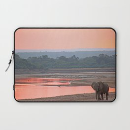 Walk in the evening light, Africa wildlife Laptop Sleeve