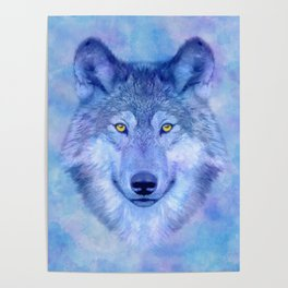 Sky blue wolf with Golden eyes Poster