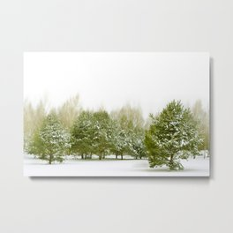 Winter 52 Metal Print