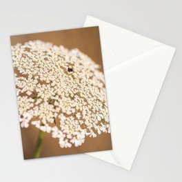 Sweetness and Light Stationery Cards