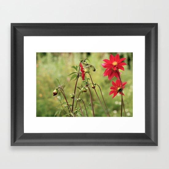 Red... Framed Art Print