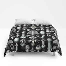 Ernst Haeckel - Basimycetes (Mushrooms) Comforters