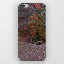 Finding Inner Peace iPhone Skin