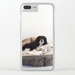 Sleepy Cavalier Clear iPhone Case