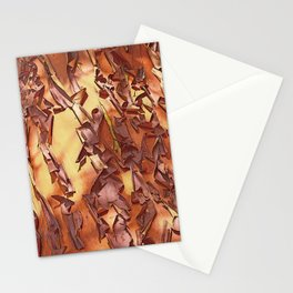A STUDY OF MADRONA BARK Stationery Cards