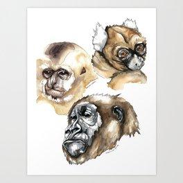 Portrait of three dying primates Art Print