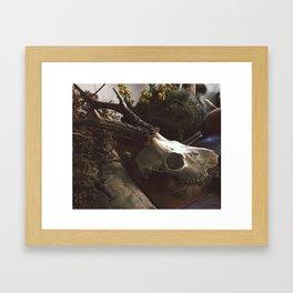 WitchCaft Framed Art Print