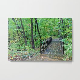 Along the Lonely Path Metal Print
