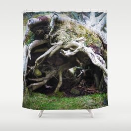 The enchanted fallen tree Shower Curtain