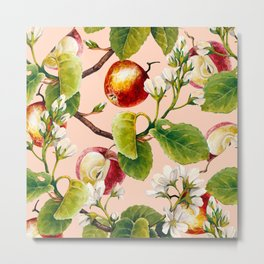 White apple blossoms and apples Metal Print