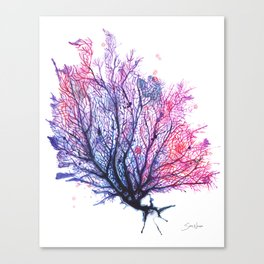 Fan Coral - Purple Canvas Print