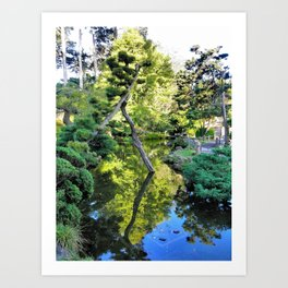 Japanese Tea Garden Lake Art Print