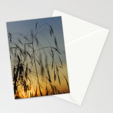 Branches at sunset Stationery Cards
