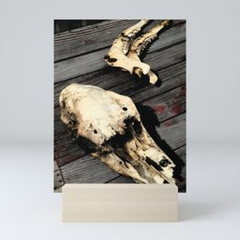 Deer Skull Mini Art Print