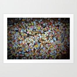 Colorful Shells Art Print