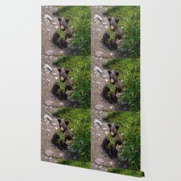 Black bear cub vs. berries Wallpaper