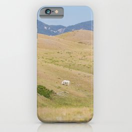 Room to Roam - Horse Photography iPhone Case