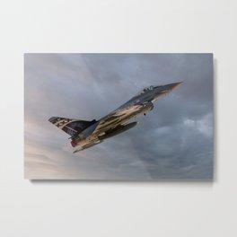 29 Squadron Metal Print