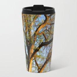 Vertical panorama of big tree at sunset light Travel Mug