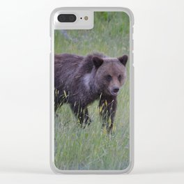 Grizzly cub learns to hunt Clear iPhone Case