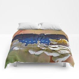 Spicebush Swallowtail Comforters