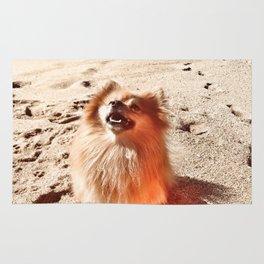 Sunny Day Pomeranian Rug
