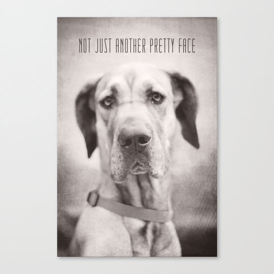 Pretty Face Canvas Print
