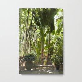 Beneath the Bananas Metal Print