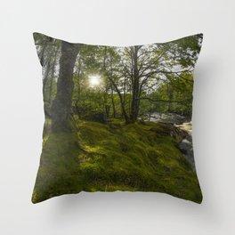 Morning River Sun Throw Pillow