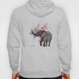 Dancing Elephant Painting Hoody