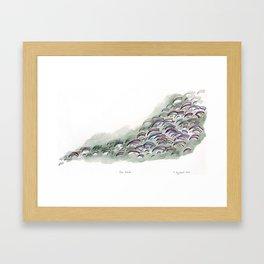 The Herd Framed Art Print