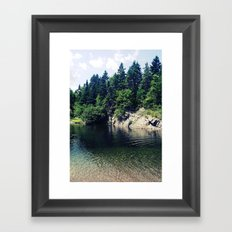 Water Hole Framed Art Print