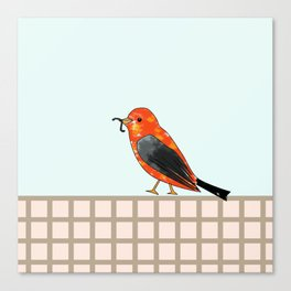 lonely bird walking with the worm Canvas Print