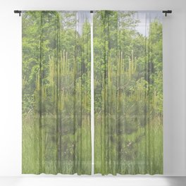 Pine and Green Meadow Sheer Curtain