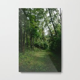 Walking Path // Ohio Metal Print