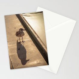 Goeland Stationery Cards