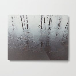 Reflected trees Metal Print