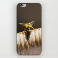 bee iPhone & iPod Skins featuring BEE by Avigur