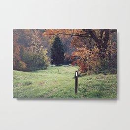 Appalachian Trail in Autumn Metal Print