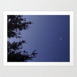 lights in the night sky Art Print
