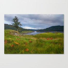 Glen Finglas Reservoir in the autumn, Scotland Canvas Print