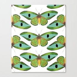 butterfly pattern Canvas Print
